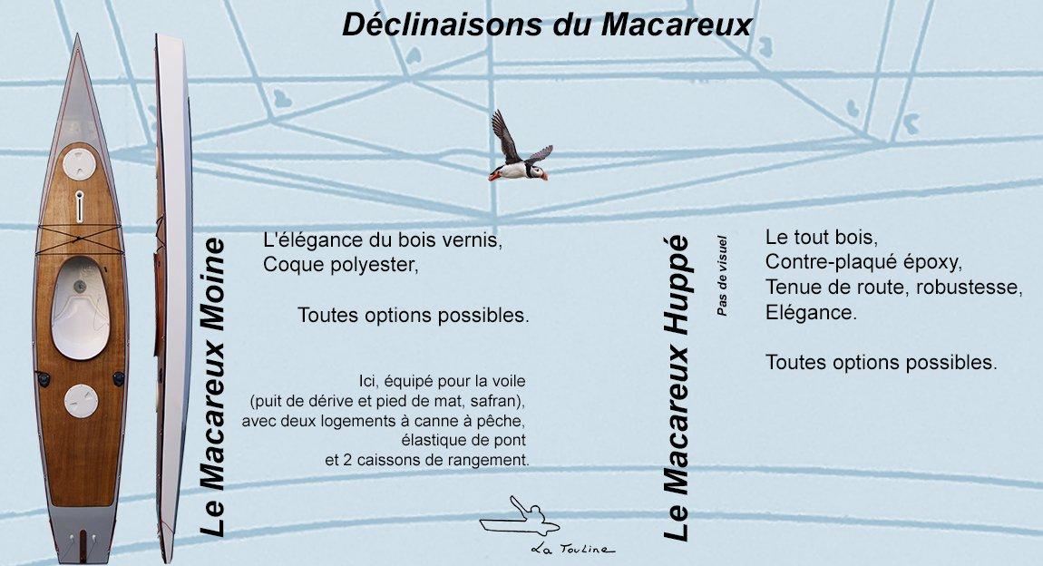SOURCE DECLINAISONS MACAREUX WEB 72PPI copier